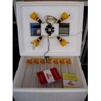 Инкубатор для яиц Теплуша ИБ 63/30/200, автоматический переворот, 4 лампы, цифровой
