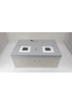 Инкубатор для яиц Курочка Ряба ИБ 60 (170), автоматический, цифровой, ламповый, вентилятор