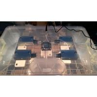 Инкубатор Курочка Ряба в пластиковом корпусе на 56 яиц, вентилятор, 4 лампы