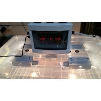 Инкубатор Курочка Ряба в пластиковом корпусе на 56 яиц, вентилятор, 4 лампы, с регулятором влажности
