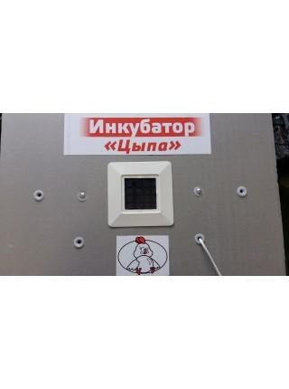 Инкубатор Цыпа ИБМ-100 с механическим переревротом, аналоговый
